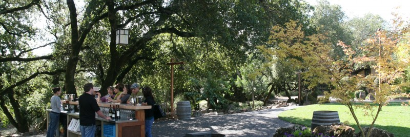 outside wine tasting in Sonoma