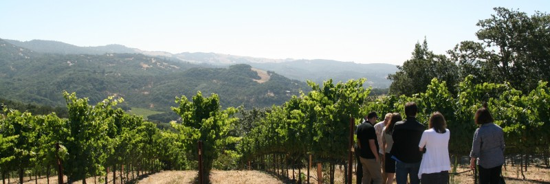 Sonoma and Napa Valley Best Private Winery Tours